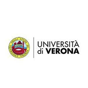 Università di Verona 2019